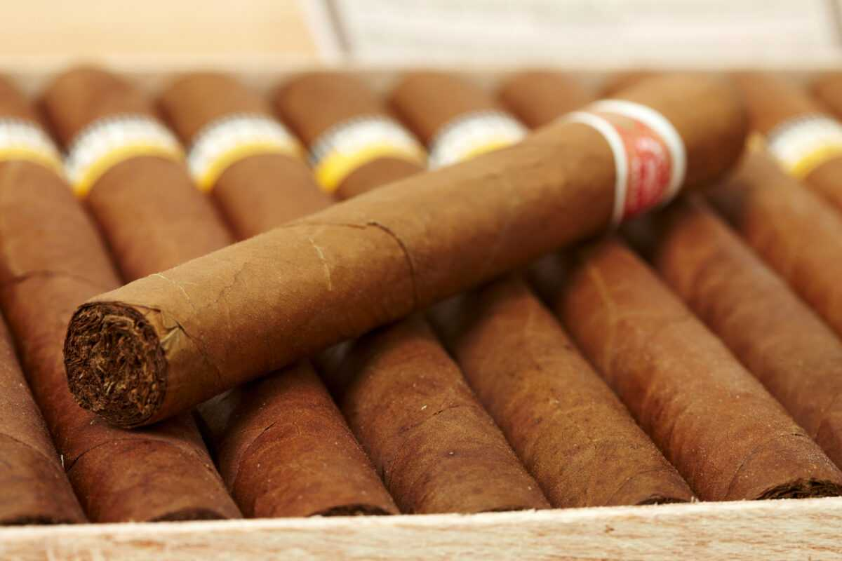 depositphotos 1657349 l 2015 - What is special about premium cigars?