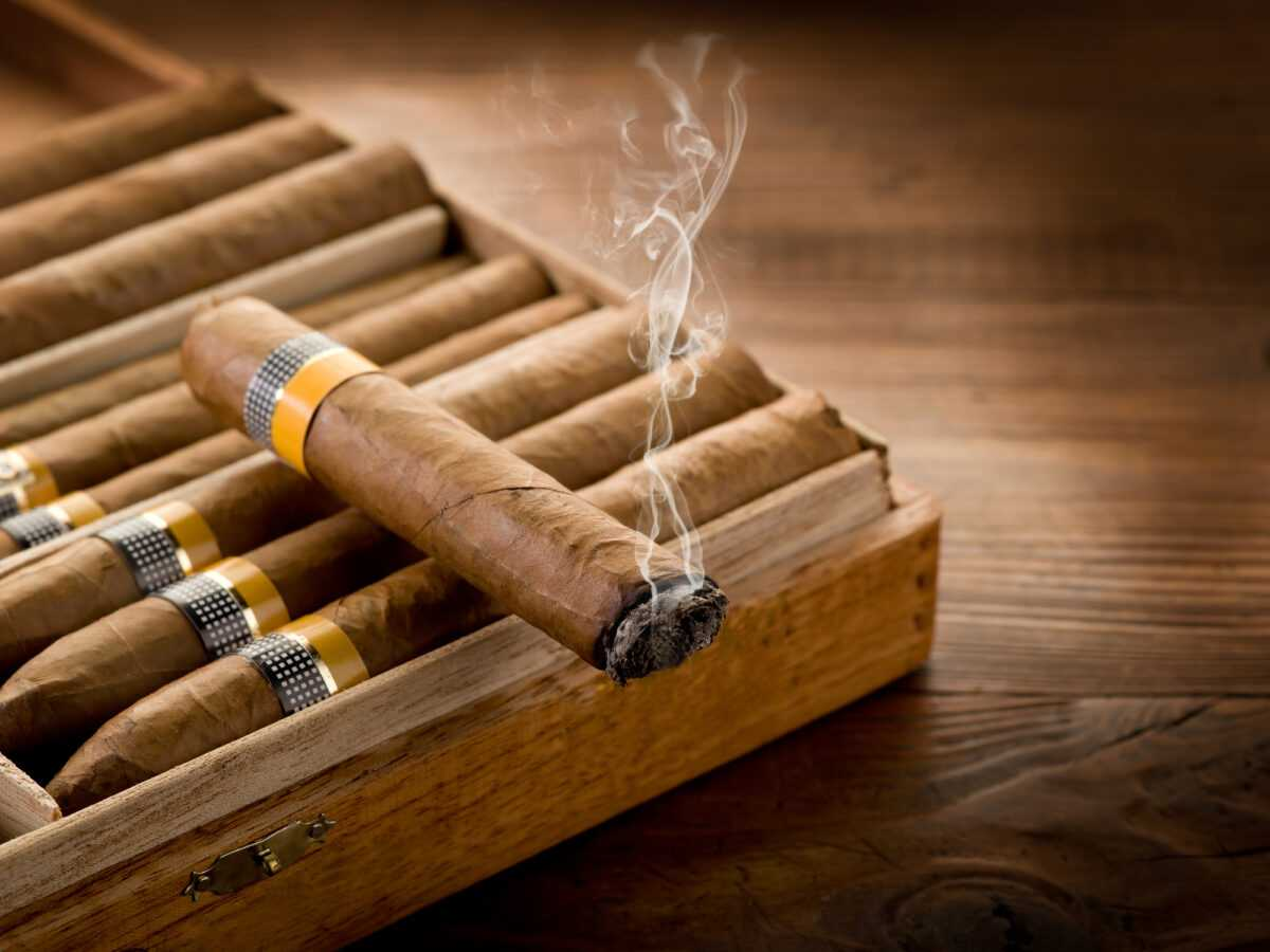 Depositphotos 6597813 l 2015 - Why cigars and champagne go well together